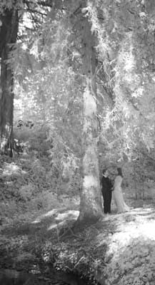 Black and white, infrared image of lesbian couple together in the forested area on the Mills College Campus